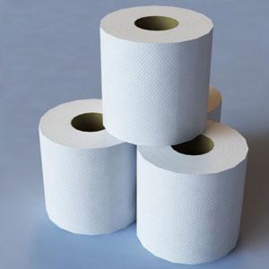 toilet-paper-big-al-091714