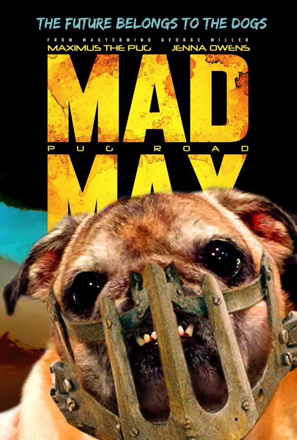 mad-maximus