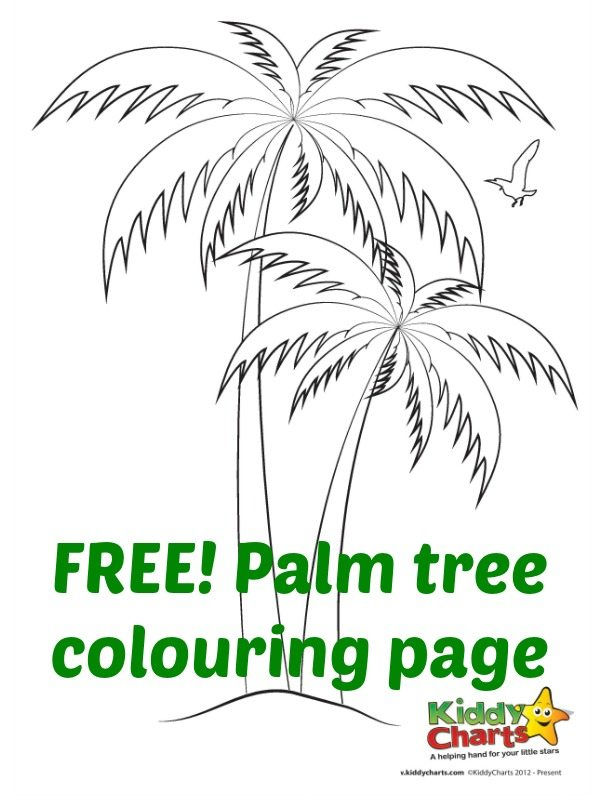 palm tree colouring sheet