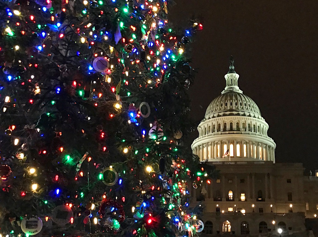 Dc Holiday Light Displays Kidfriendly Dc