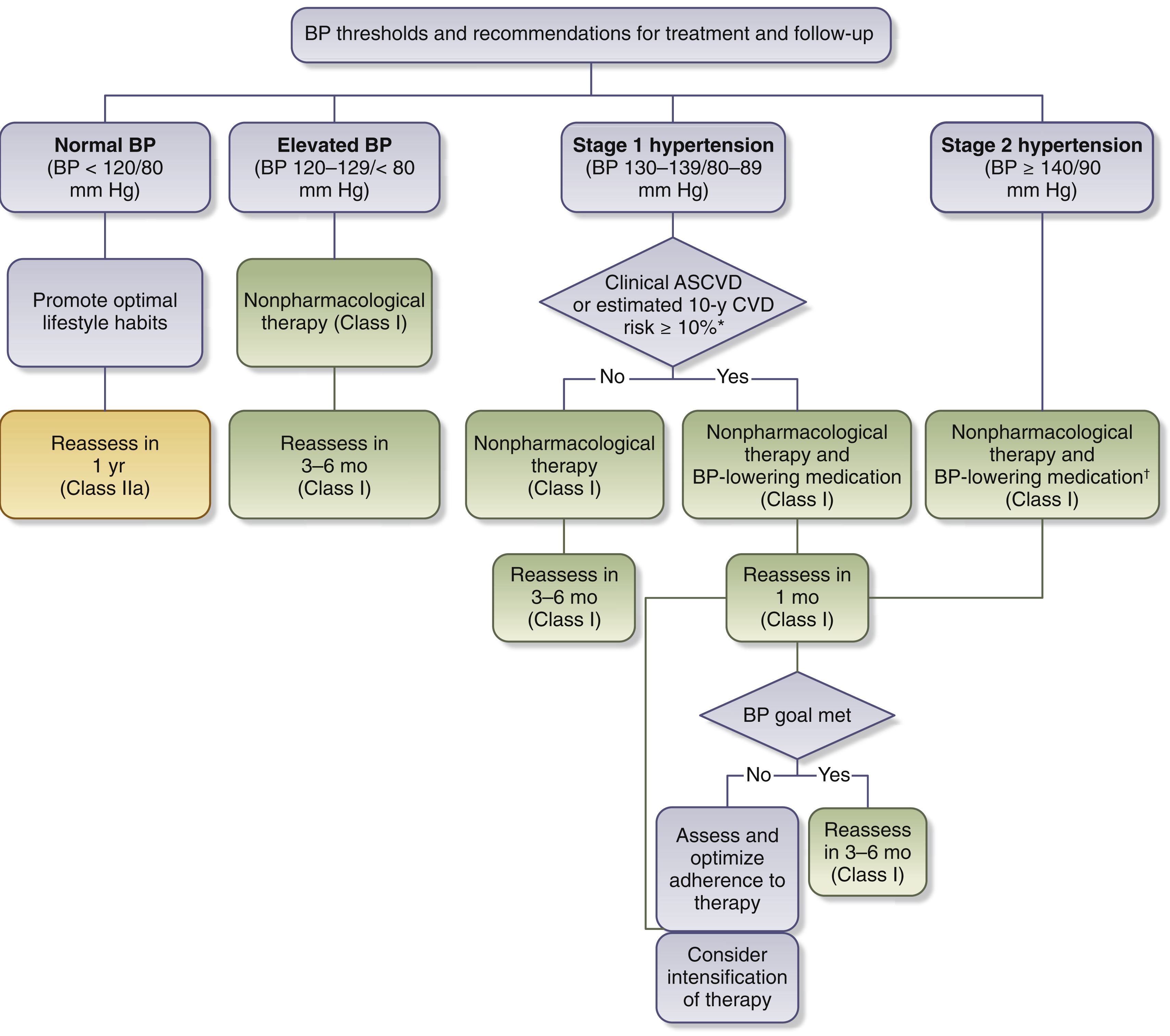 Updated Guidelines For The Diagnosis And Management Of