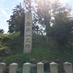 tarui_itiridukaato