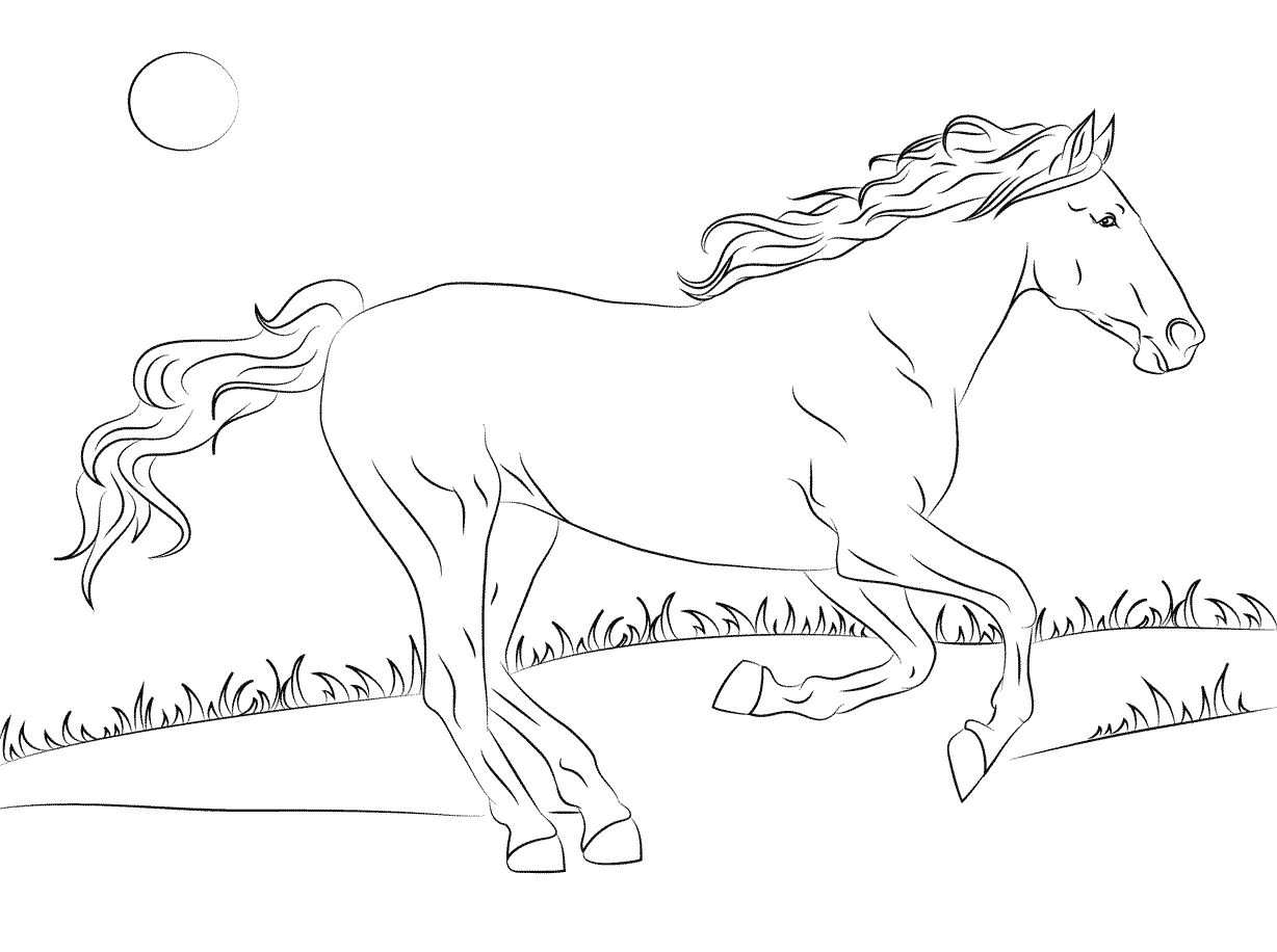 Kids N Fun Com Coloring Page Horse Breeds Mustang