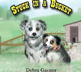 Stuck in a Bucket