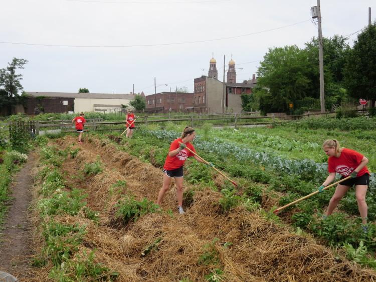 Grow Pittsburgh volunteers. Courtesy Grow Pittsburgh.