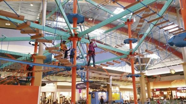 6 Ways Kids Can Defy Gravity On Pittsburgh Ziplines And