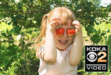 7 pick-your-own farms where Pittsburgh kids can harvest fruit and fun