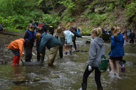 Trout in the Classroom engages Pittsburgh kids with cool aquaponics project