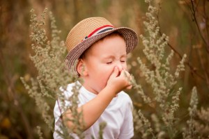 child in a field of tall grass sneezing and holding nose