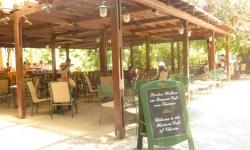 Kipos Café