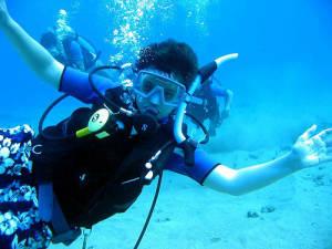 1575-large_diver