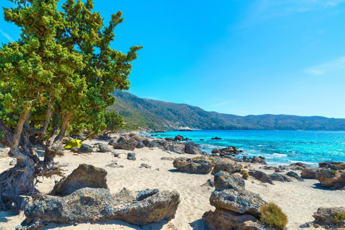 elafonisi beach and forest Chania Crete