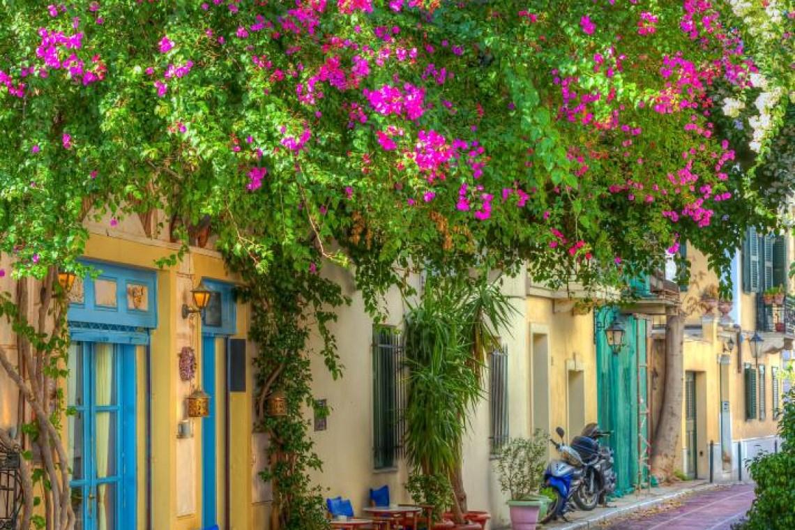 Plaka narrow street with plants