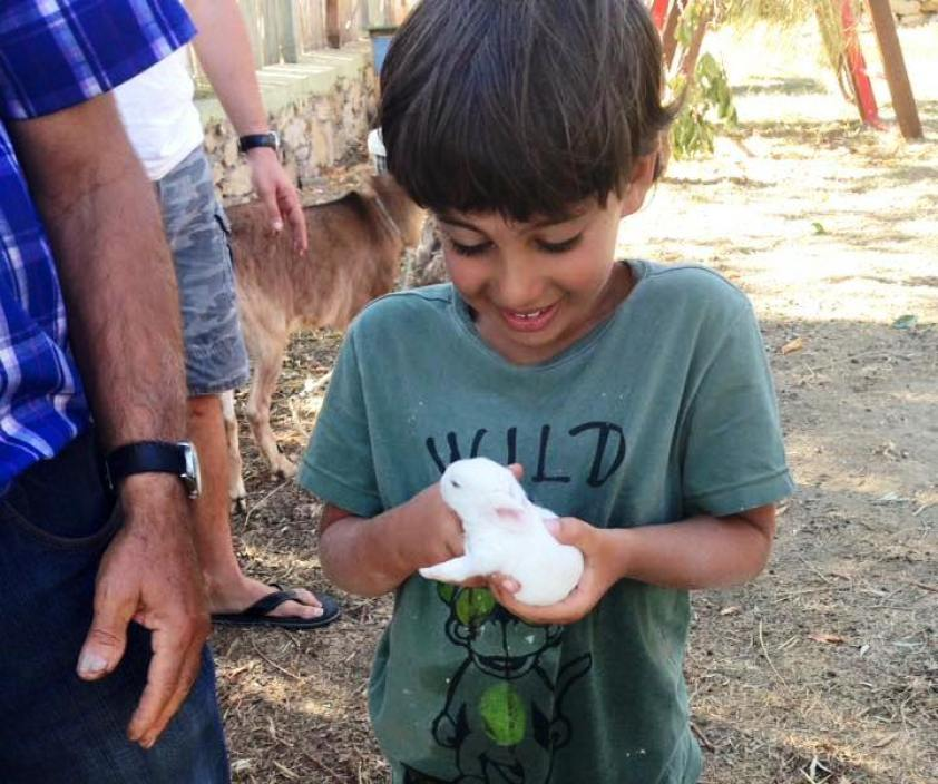 kids love greece activities for families sfakia chania wild west of crete family day tour