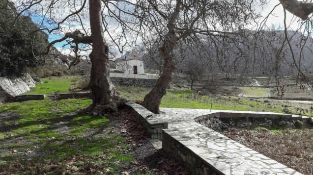 Hiking in Crete Through Forests, Traditional Villages, and Olive Groves
