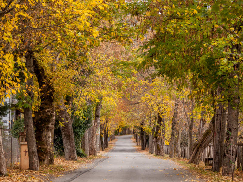 Visit Greece in Fall