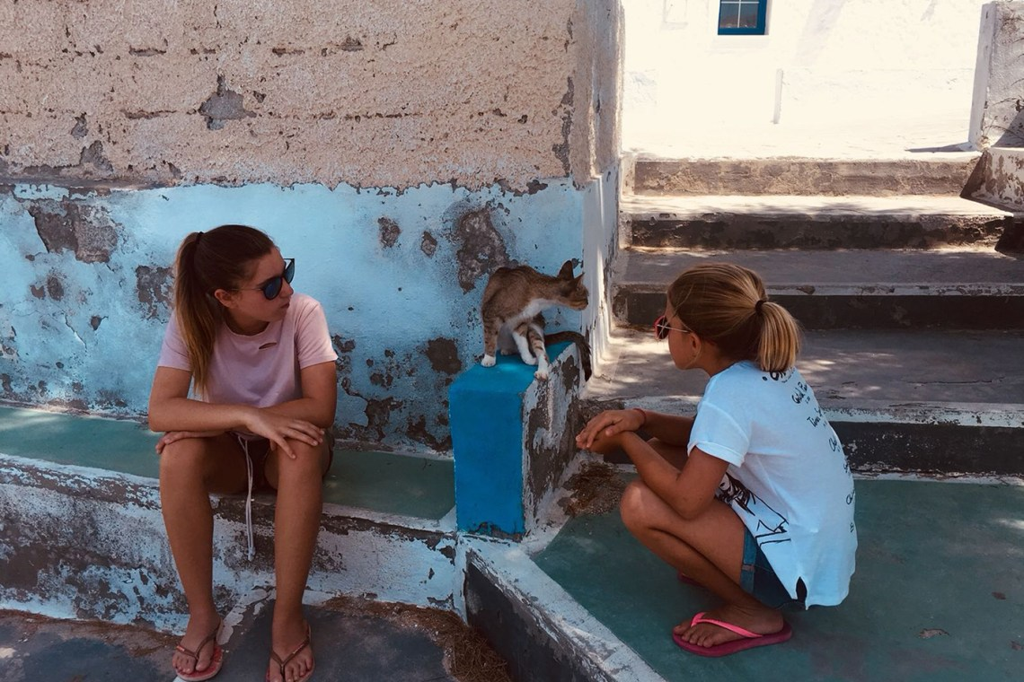 Milos Road Trip Adventure Street cats kids