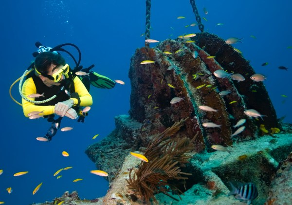 """Discover the """"underwater ark"""" of Greek history: 91 wrecks accessible to divers"""
