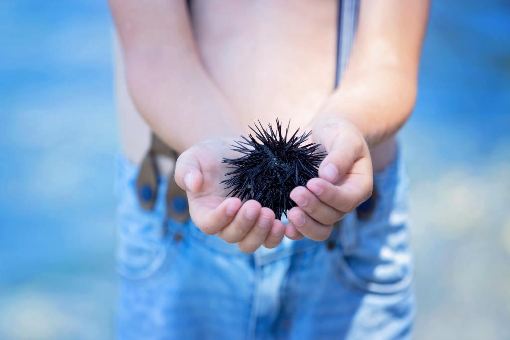 Elafonissi beach Crete kid holding a sea urchin Families Love Greece