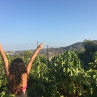 Nemea with Kids: Mythology and Wine Tour for families