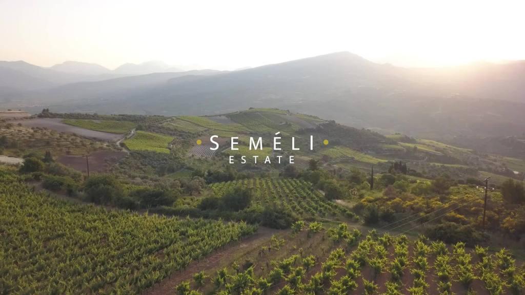Semeli Estate Winery Facebook