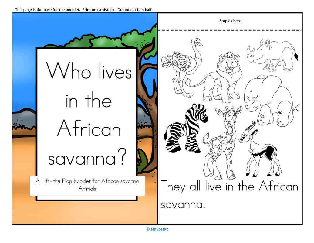 Worksheet About Animal Facts