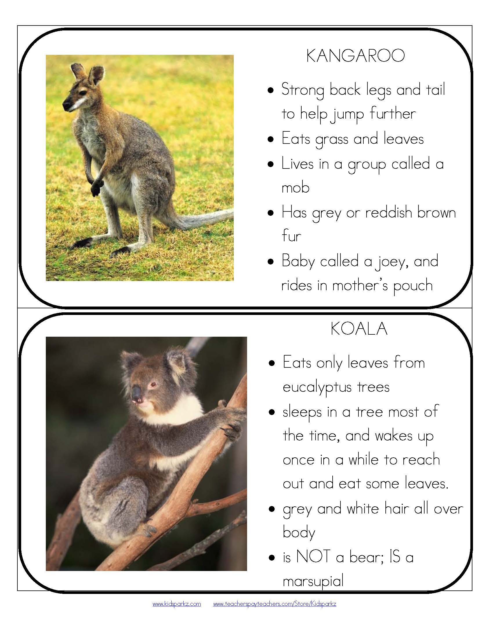 Australian Animals Theme Unit Hands On Learning Activities