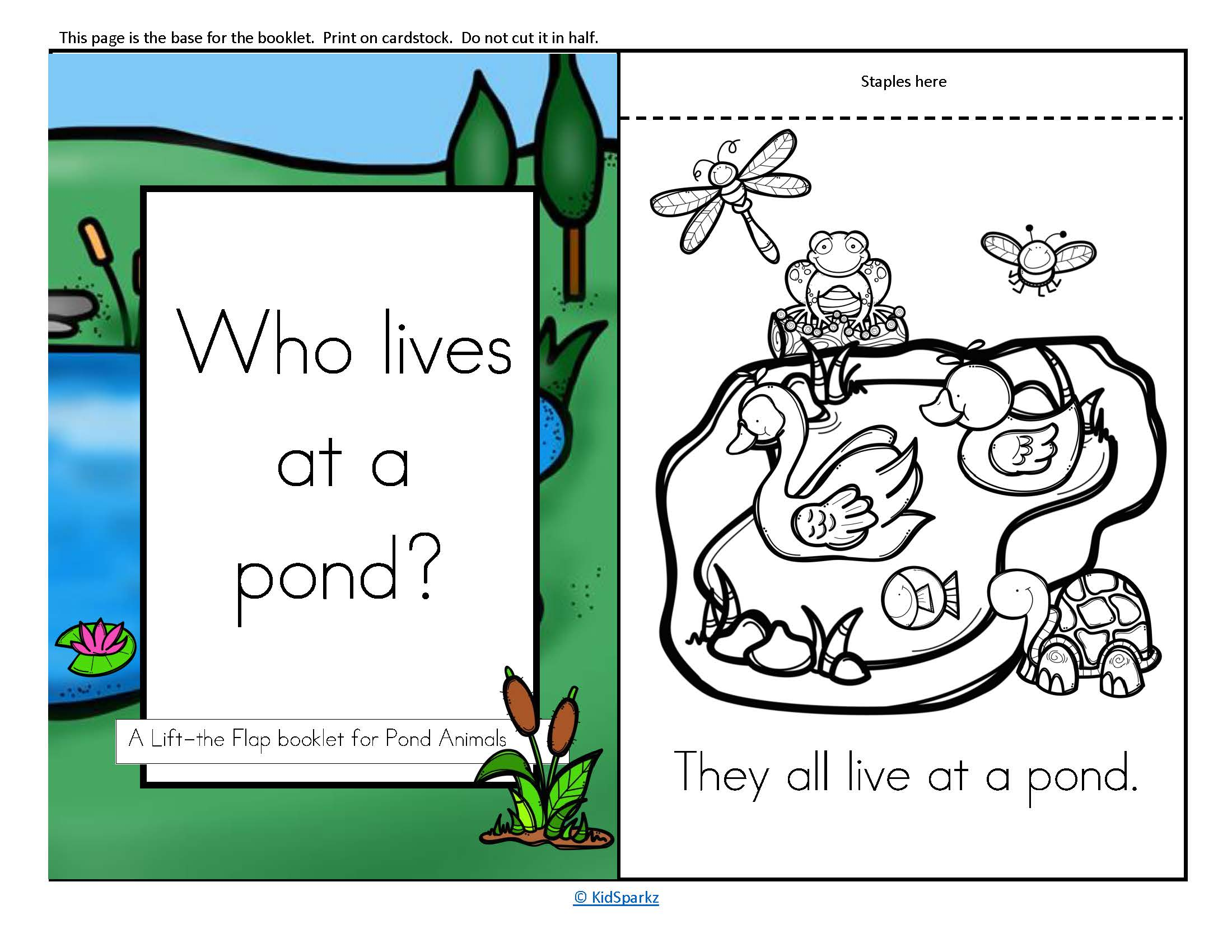 Pond Animals Informative Reader Plus Puppets Vocabulary