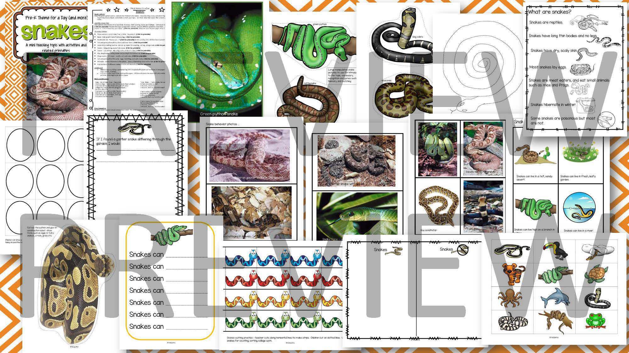 Snakes Theme Math Science And Literacy Activities And