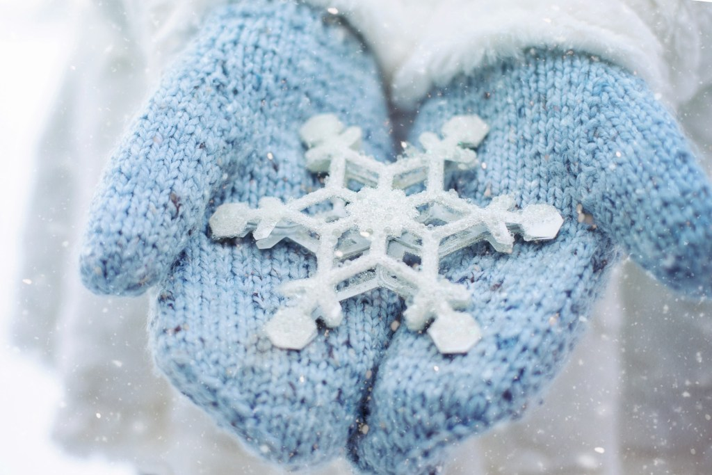 hands wearing blue gloves holding a snowflake