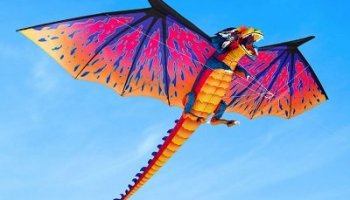 The 10 Foot Dragon Kite