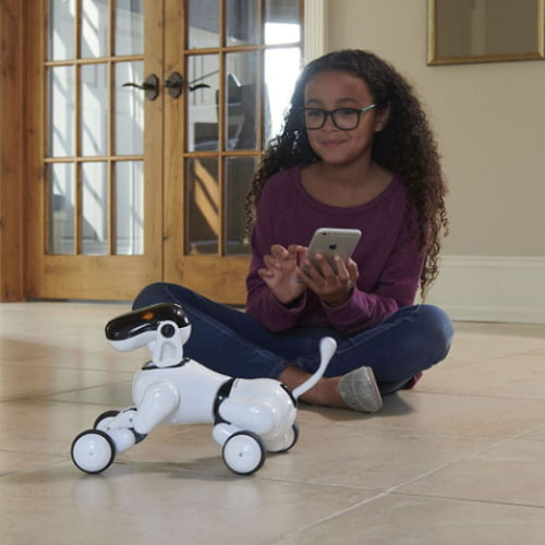 Voice-Controlled-Robodog