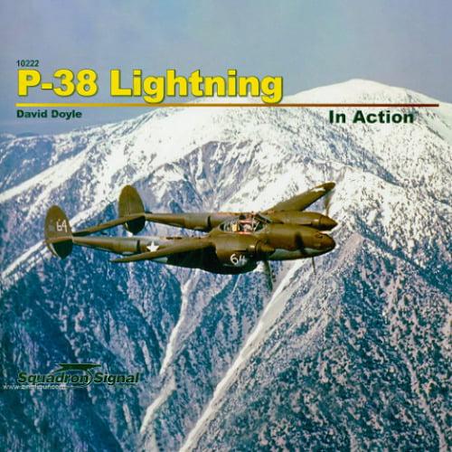P-38L Lightning WWII Model Kit1