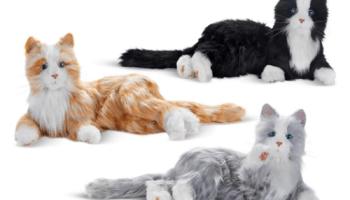 Lifelike-Companion-Cat