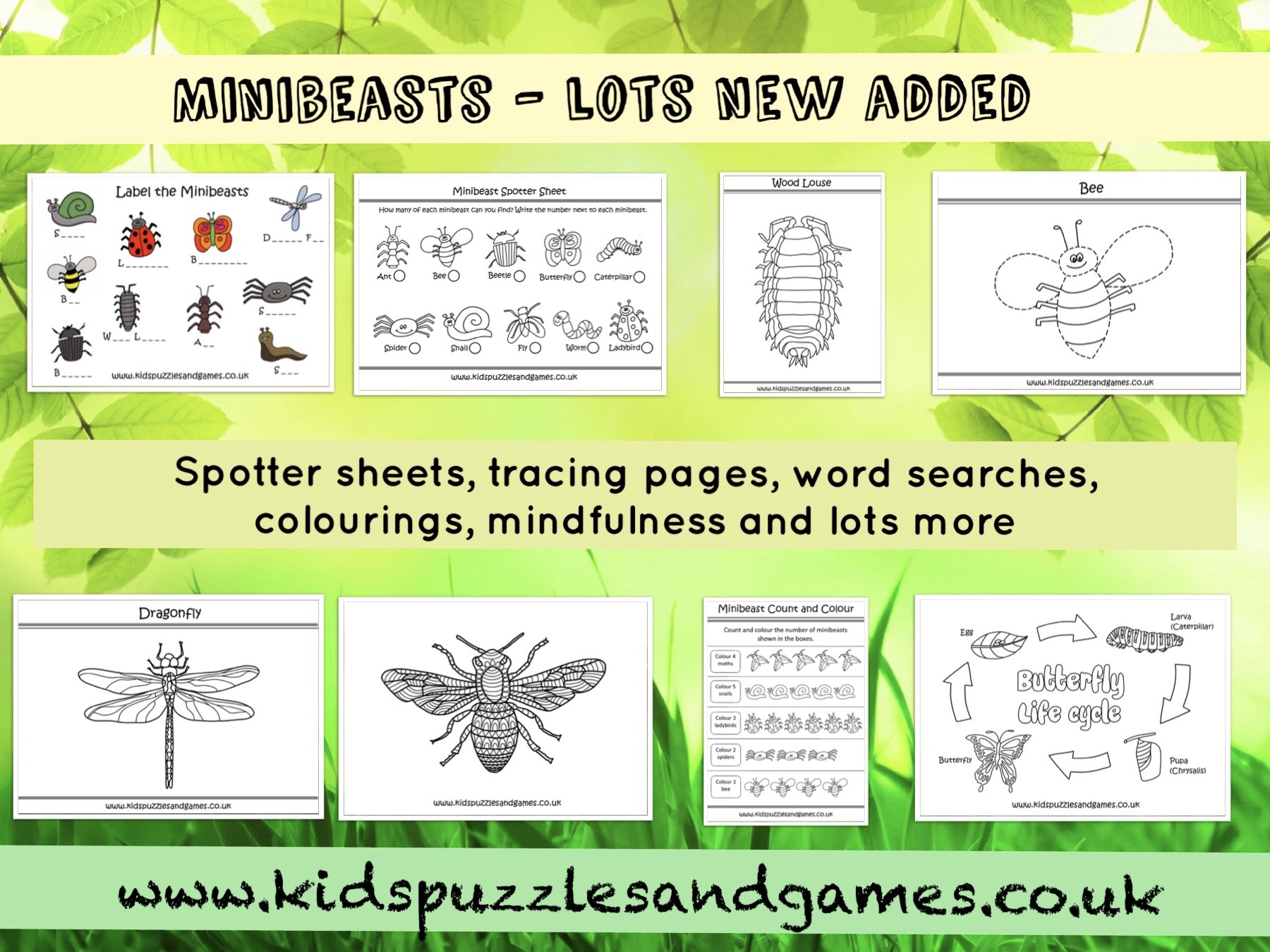 More Added To Our Popular Minibeasts Theme