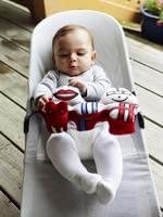 BabyBj�rn toys for babysitter