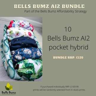 Reusable nappies AI2 Bells Bumz