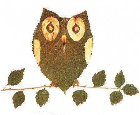 hiboux en feuilles