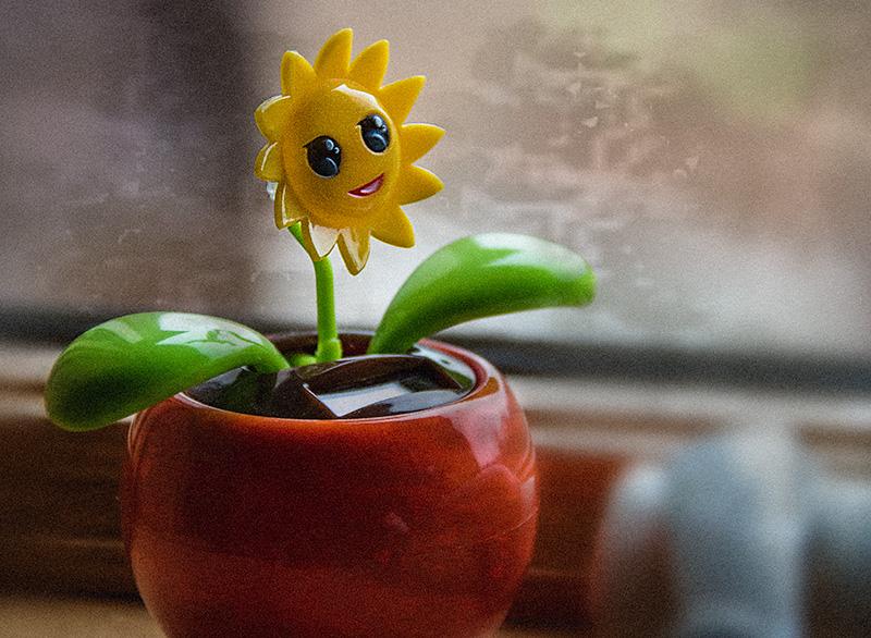 flowerererererelksdfkljaslk