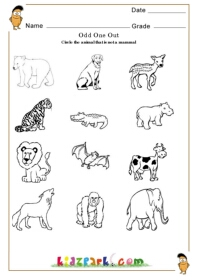 Activity Sheet For Kids To Circle Play School Activity