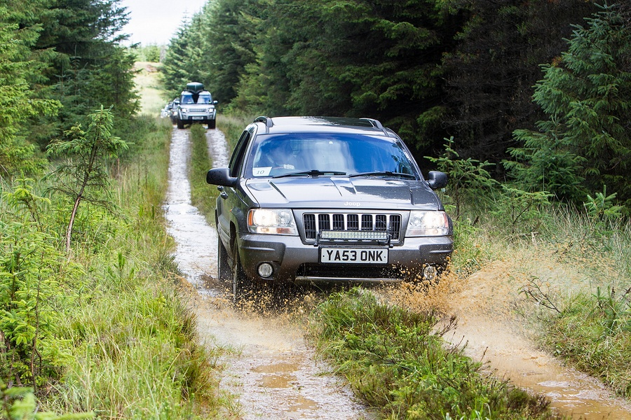 kielder_safari_aug_2017_0022