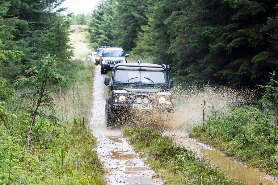 kielder_safari_aug_2017_0025