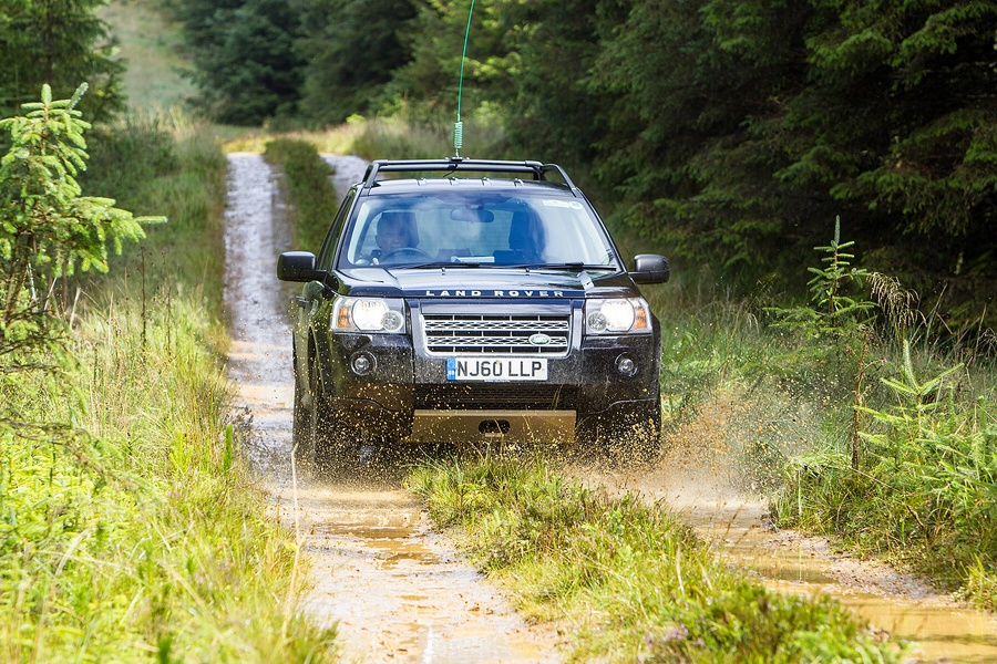 kielder_safari_aug_2017_0030