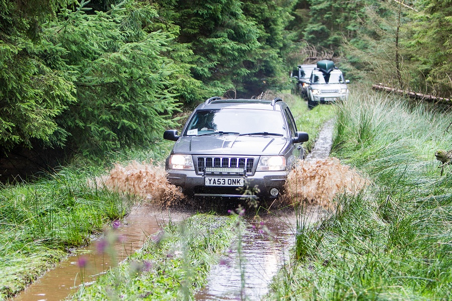 kielder_safari_aug_2017_0034