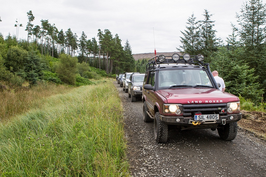 kielder_safari_aug_2017_0048