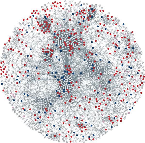 Network 001