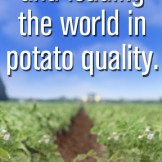 Web Banner Ad