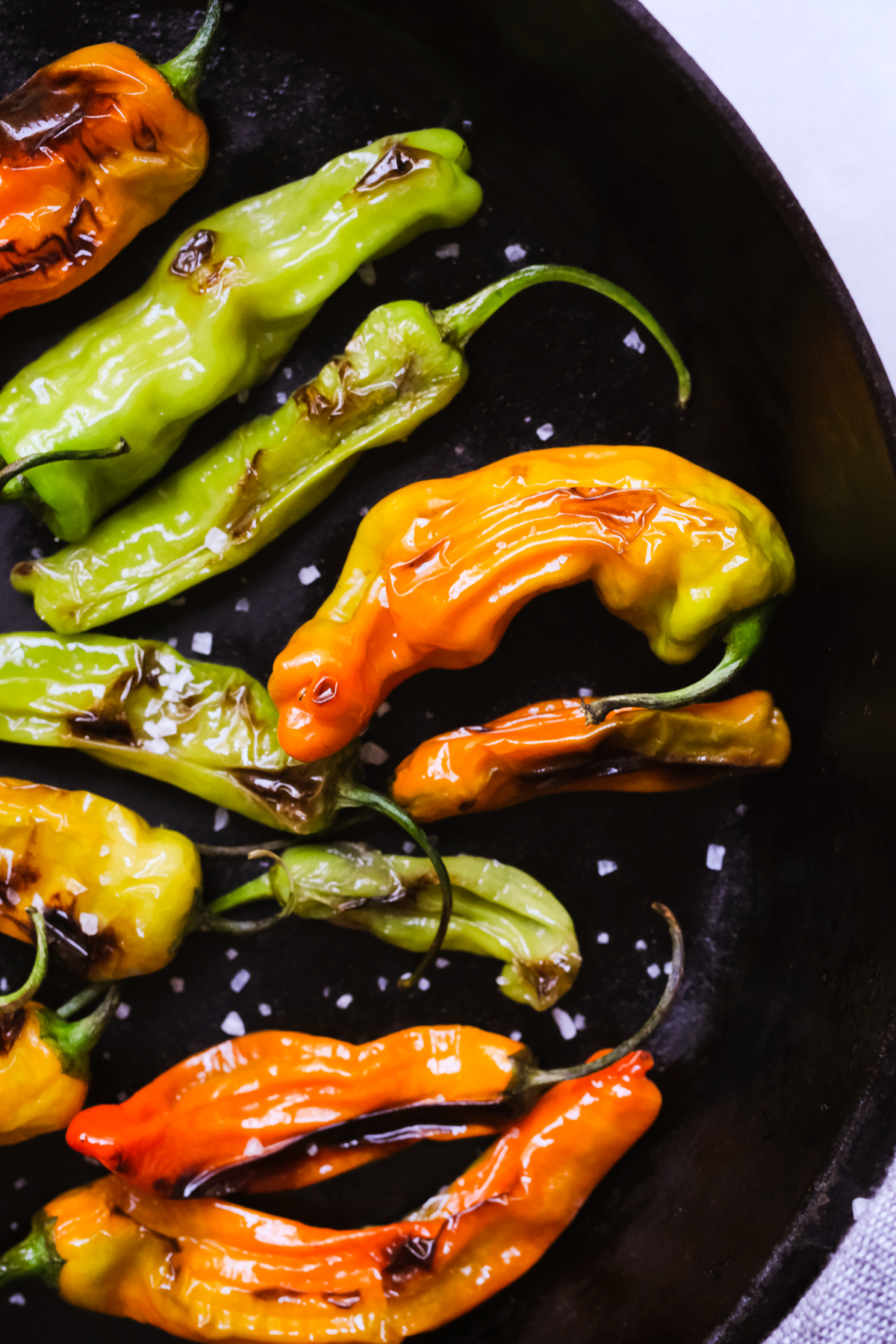 blistered shishito peppers in a skillet