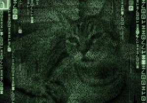 Grissy Matrix