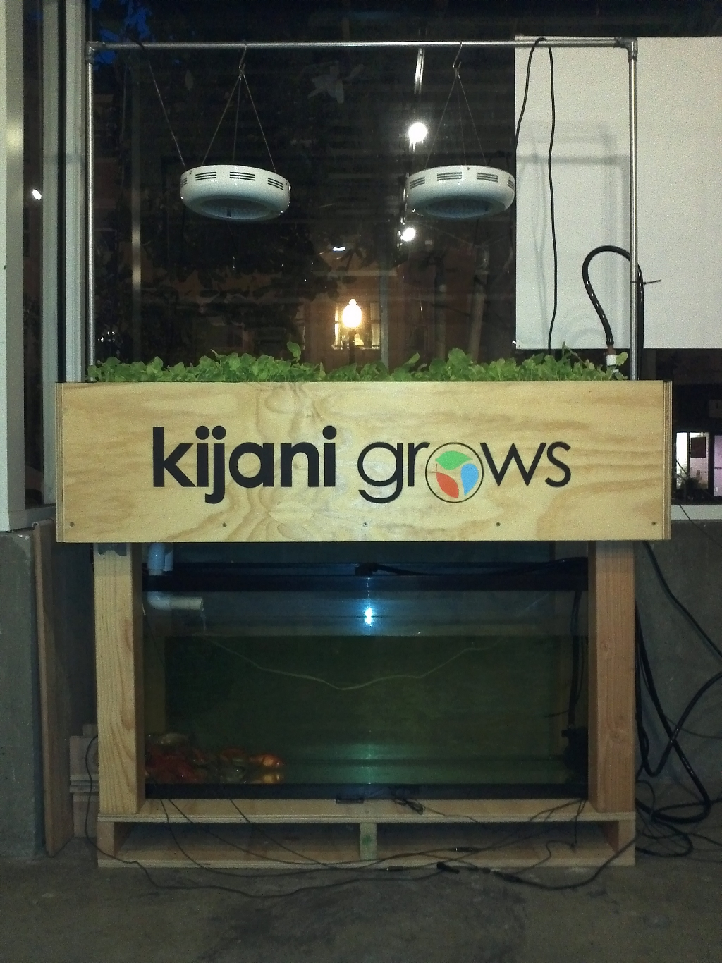 kijani_grows_smart_aquaponics_garden